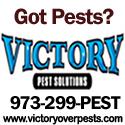 victorypest2
