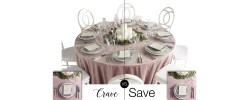 Party Rental Ltd. - Crave vs. Save: Rose Velveteen