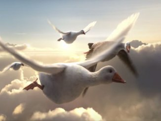 Air New Zealand goose ad