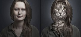 Des chats dans la peau de leurs maîtres respectifs!