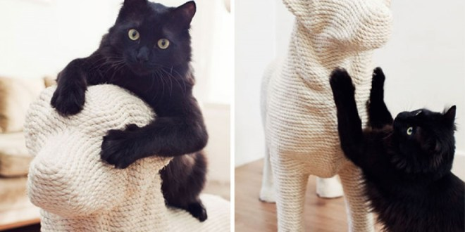 Un griffoir en forme de chien pour votre chat