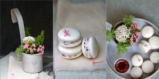 Vanilla Macarons with Quark Kirsch & Tart Cherry Filling