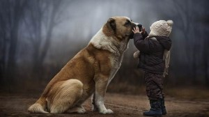 foto_dog_friend