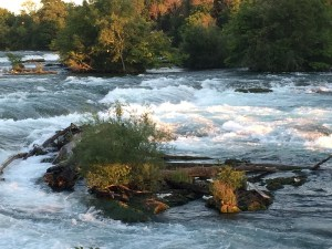 The Cascade Rapids, Niagara River above American Falls.