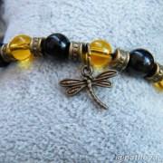 Dragonflies signal transformation