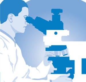 diagnostik-immuntherapie