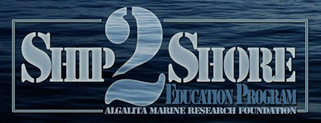Become a virtual trash detective. Join @Algalita's Ship-2-Shore program to ask scientists your plastic questions