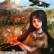 Roman Petite Fleur des Champs et la Pierre de Soleil Patrick Huet