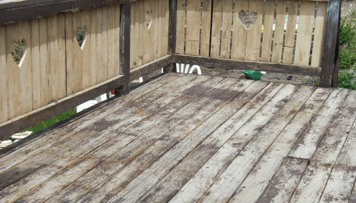Deck Restore Paint Before and After Pictures