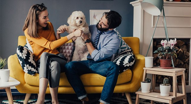 Millionaire To Millennials: Don't Get Stuck Renting A Home… Buy One!   Simplifying The Market