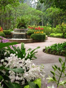 National Orchid Gardens, Singapore