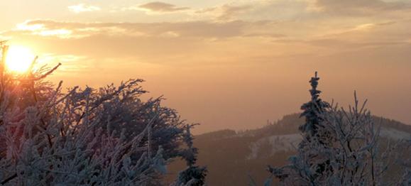 winter-morning