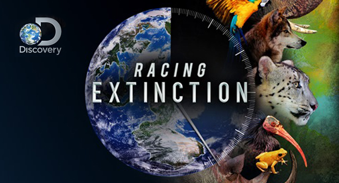 Racing extinction: attention grabbing but audiences need to be taken on journeys of deeper understanding