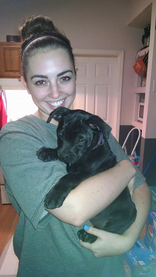 ADOPTED!!!  Meet Athena - This puppy was a pull of 8 from Aiken County Shelter, along with their mother (Sophie). They have been in foster with constant care and interaction since 2 days old. They are being fully vetted. Deworming every 2 weeks, and shots at required ages.