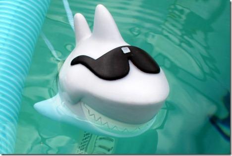 scary shark 001