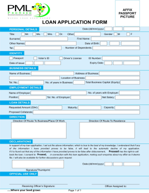 Microfinance Loan Application Form - Fill Online, Printable, Fillable, Blank | PDFfiller