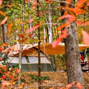Unique Georgia Camping Trips