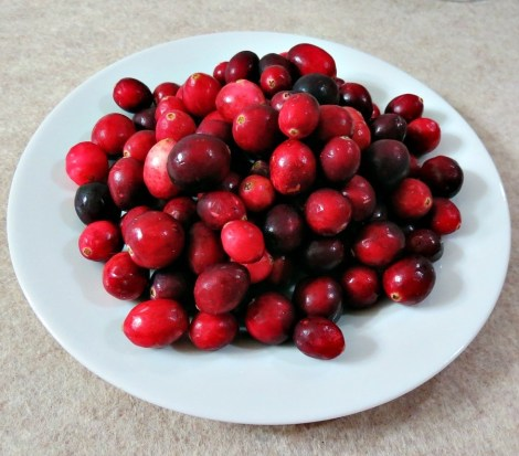 cranberry sauce 024a