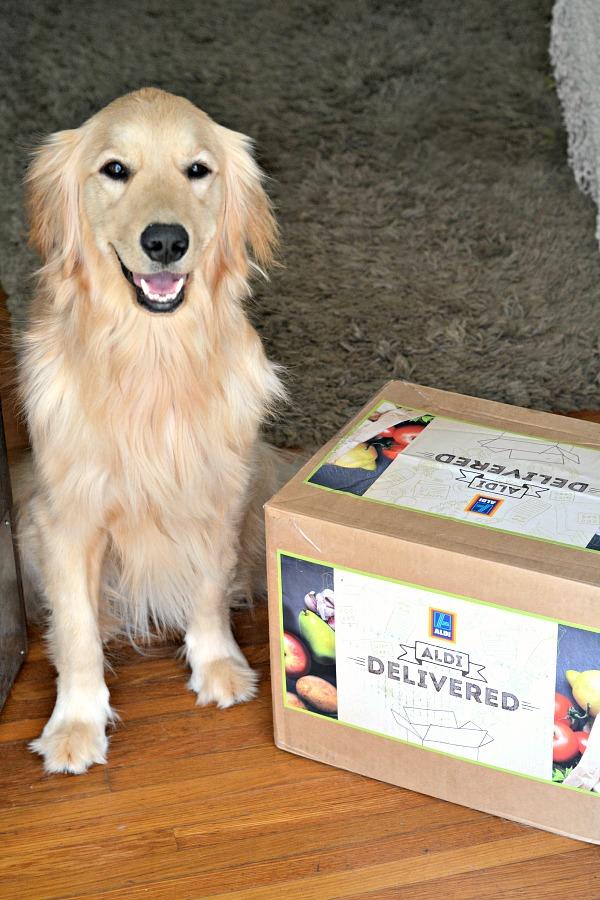 ALDI Delivered Box