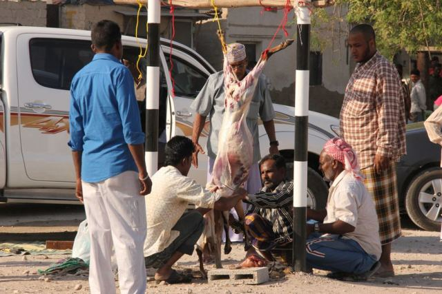 Goat slaughter, central Salalah