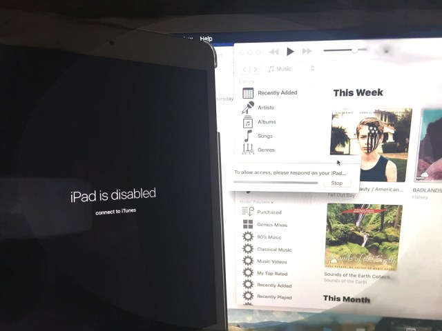 iPad Mini 2 Retina failed to load iOS 10