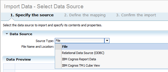 Cognos Insight Import