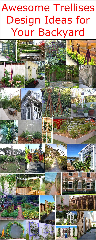 Fullsize Of Designing Your Backyard