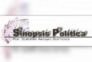 Sinopsis Política