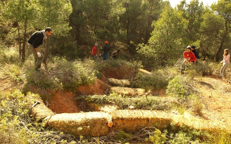 Transformando una cárcava -zona de máxima erosión- en un espacio cosechador de agua, suelo y humedad (enero de 2013)