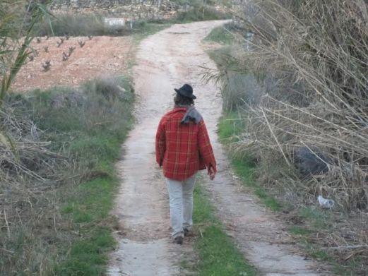 encuentro-otoño-monovar_camino