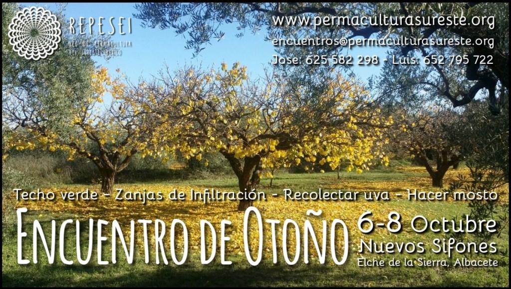Cartel del encuentro de Otoño 2017- Un bonito arbol otoñal de la finca y las actividades de techo verde, zanja de infiltración, cosechar uva y hacer mosto