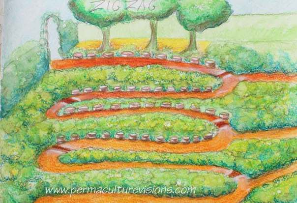 snake-paths mounded garden beds for good water management