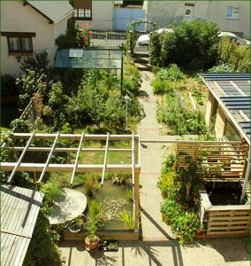 micro jardin 2