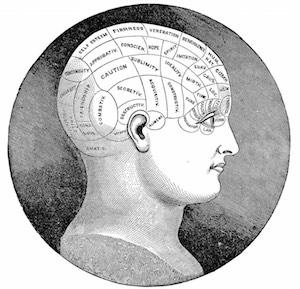 perpetua neo brighton psychotherapy coaching phrenology