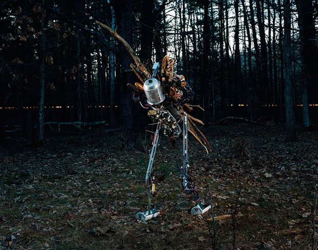 Photos of a Lone Robots Attempt to Coexist with the Natural World robot5 mini