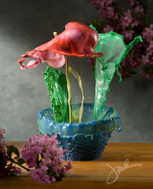 Incredible Flowers Created with Splashes and High Speed Photography flower1 mini