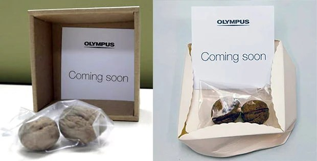 Olympus Goes Nuts, Possibly to Promote Its New Uber Durable Camera nuts mini
