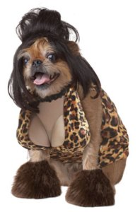 snooki-dog-costume
