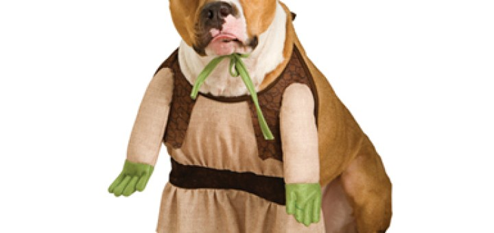 shrek dog