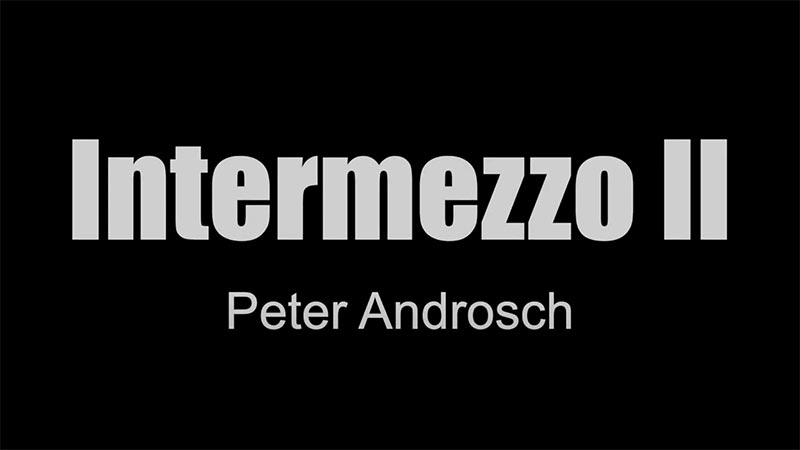 Intermezzo II