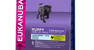 Eukanuba, puppy