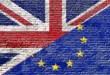 EU Referendum PetQuip