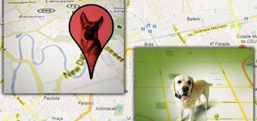 mapa-gps-localizacao-rastreamento-petrede