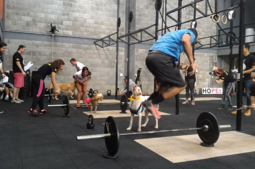 praticar-atividades-físicas-Hills-Pet-Nutrition-petrede