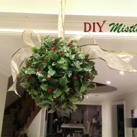 DIY Mistletoe Ball