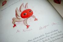 Zum Abschluss signierte Benjamin Lacombe seine Bücher.