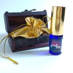 The Hookup 10ml - Treasure Chest Included With Purchase