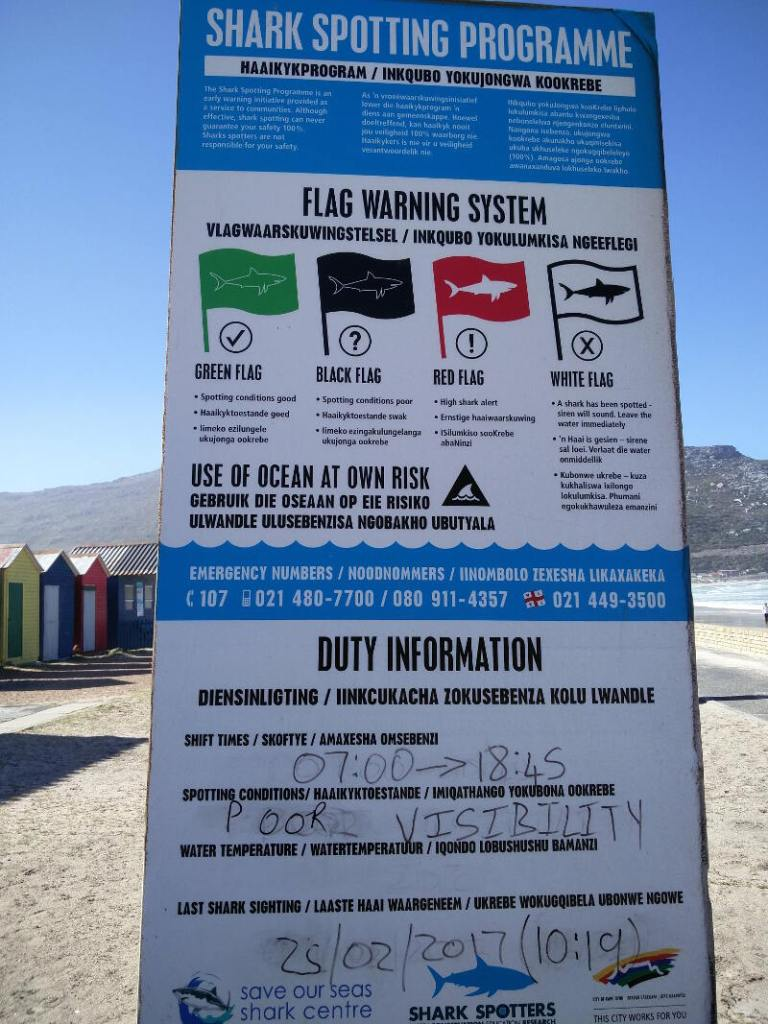 Shark Flag Warning System. I've never seen the green one up...