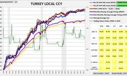 turkey1987lccy