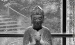 Don't Shoot the Buddha - Buddha Photograph explained